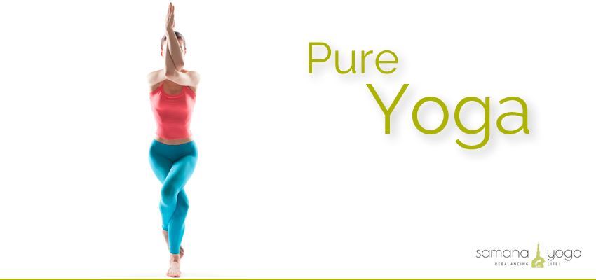 Pure Yoga Basic Workshop