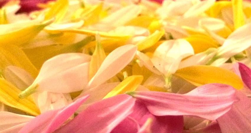 Mandala Namaskar & Mantra Rezitation
