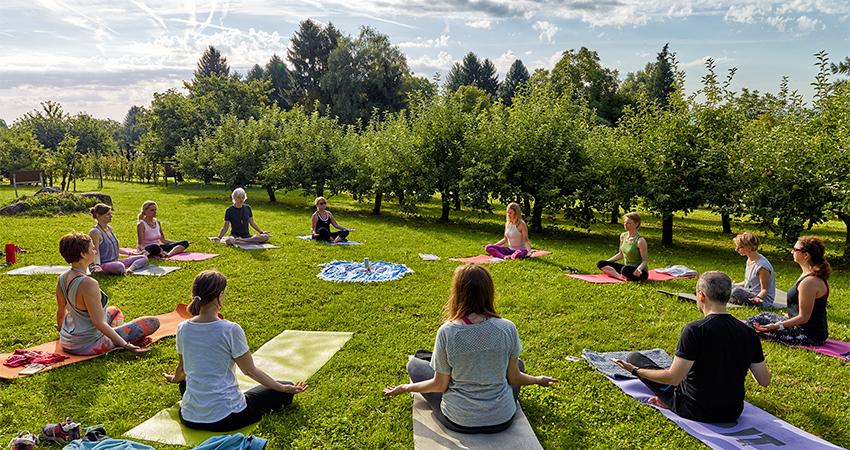 Yogapicknick für die Sinne