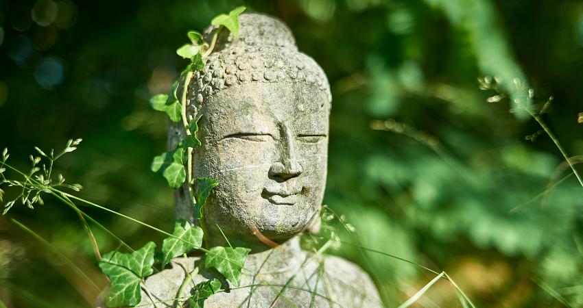 Yin Yoga - Stille und Achtsamkeit